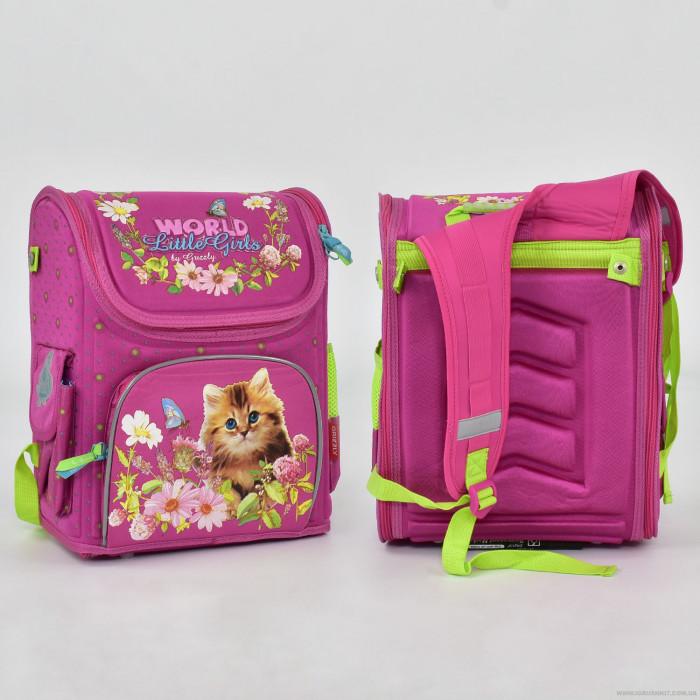 Рюкзак школьный N 00149