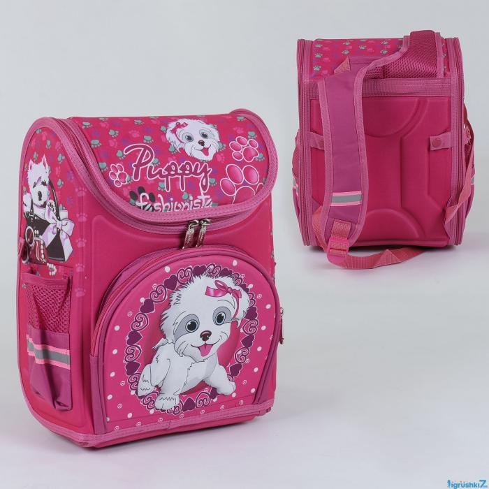 Рюкзак школьный каркасный С 36166